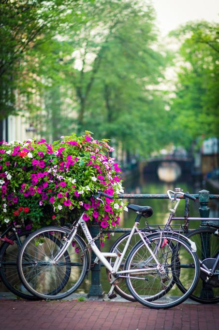 Bike and Canal